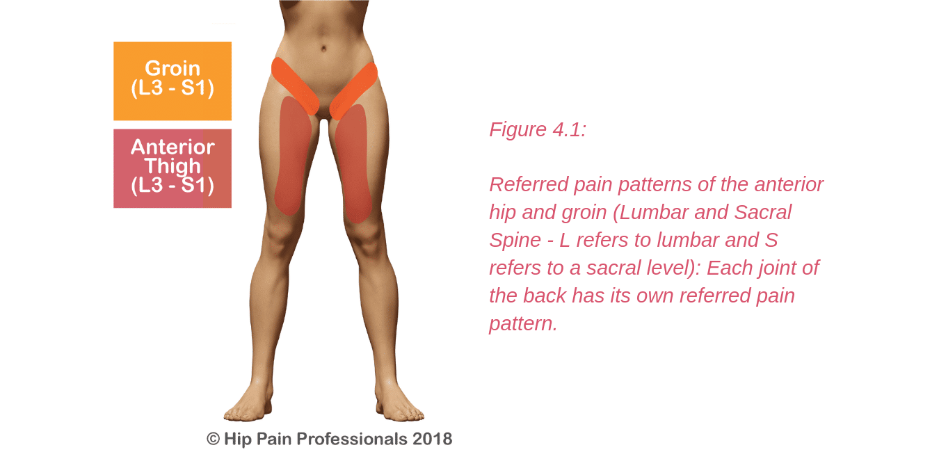 Groin Pain Structures And Conditions That Can Contribute To Groin Pain
