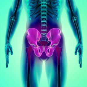 3D illustration of Hip Skeleton, hip and pelvis pain