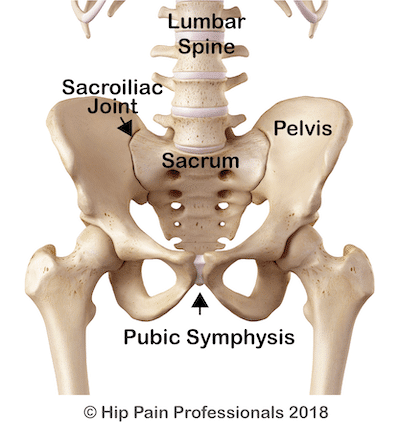 SIJ pain can occur at the SIJ anatomy of the pelvis from the front