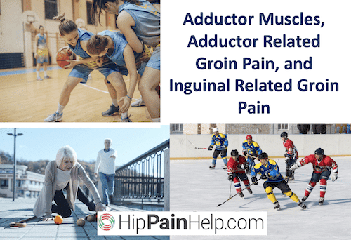 Adductor Muscles, Adductor Related Groin Pain, and Inguinal Related Groin Pain header