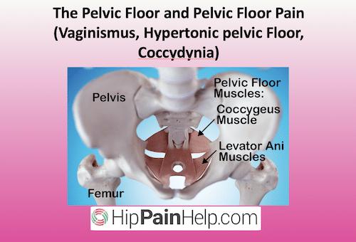 The Pelvic Floor and Pelvic Floor Pain Vaginismus, Hypertonic pelvic Floor, Coccydynia header